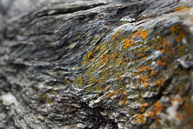 Photographie de pierre et mousse (Bourgogne)